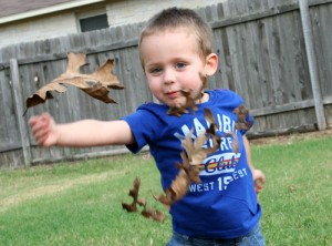 08.26.10 Leaves, one of the great joys of childhood.